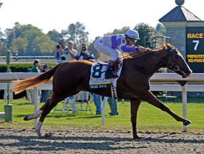 Square Eddie Romps in Breeders' Futurity