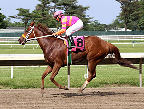 Srumdiddlyumptious wins the 2013 Fort Monmouth Stakes.