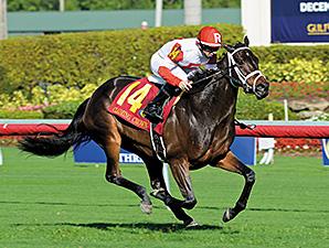 St. Borealis wins the 2014 Tiara Stakes.