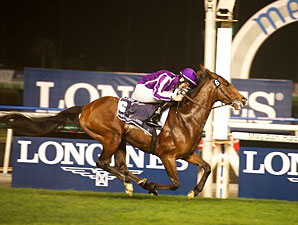 Superstar St Nicholas Abbey Injured, Retired