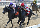 'Dude' Spoils Palace Malice's 2015 Debut