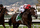 Stand and Salute Marches Toward Cal Derby