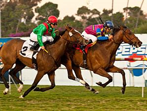 Star Billing wins the 2011 Matriarch.