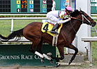 Star Guitar Named La. Horse of the Year