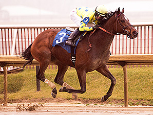 Star Pearl wins the 2015 Nellie Morse Stakes.