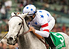 Stardom Bound Heads KY Oaks Nominees