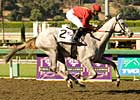 2YO Filly Eclipse Award: Stardom Bound