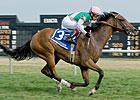 Starformer Relishes Turf Course at Delaware