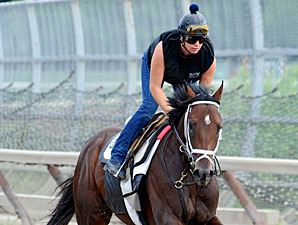 Stay Thirsty, Uncle Mo Work 5 Furlongs