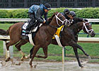 Stay Thirsty Sizzles; Mucho Macho Man Works
