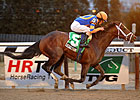 Ky. Derby Trail: Thirst Quencher