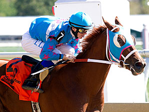 Steady Warrior wins the 2010 Maryland Million Nursery.