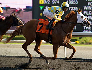 Favored Stealcase Locks Up Ontario Derby