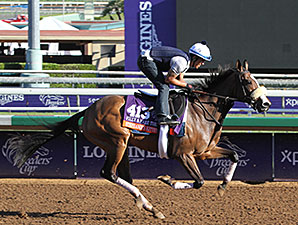 Stephanie's Kitten - Breeders' Cup 2014.