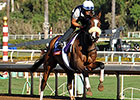 Brown Brings Talent Times Two Into F&M Turf