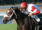 Stephanie&#39;s Kitten Scratches Out JF Turf  Win