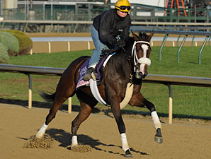 Stephanie's Kitten, Churchill Downs, Nov 1, 2011.
