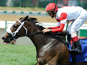 Schwartz Filly Samitar Eyes Lake George
