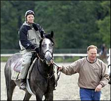 Steve Haskin's Belmont Report: Time to Roll the Dice