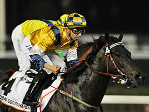 Sterling City Charges Home in Golden Shaheen