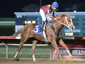 Sterling Madame wins the 2012 Wild Rose.