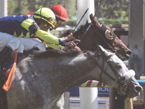 Sterwins Nips Rahy's Attorney, Sets Turf Mark