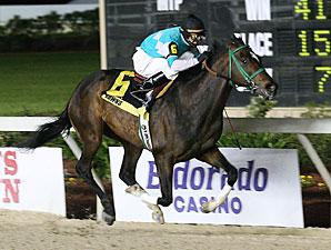 Stonehouse wins the 2009 Gulf Coast Classic.