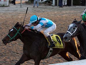 Stonehouse wins the 2010 Mineshaft.