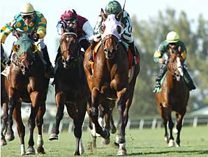 Stormalory (center, maroon silks) finished a close third in the Palm Beach Stakes