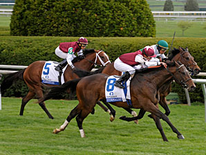Transylvania: Stormalory Shows Turf Form