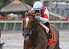 Storming Inti, Global View Top American Turf