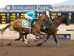 Storming Saint (left) finished 2nd in the Borderland Derby, but was awarded the win via disqualification.