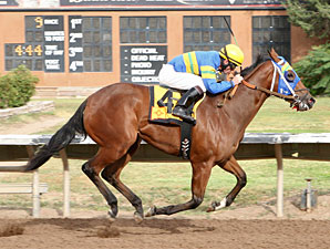 Storms Surprise wins The George Maloo Futurity.