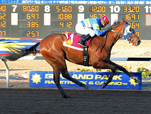 Storms Surprise wins the Red Hedeman Mile.