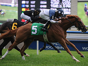 Stormy Lord wins the 2010 Toronto Cup.