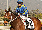 Santa Ana Winner Stormy Lucy Sold to Moger