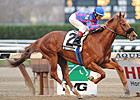 Stormy&#39;s Majesty Rules Discovery Handicap