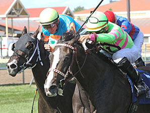 Stoupinator Wins the 2013 Northbound Pride Oaks.
