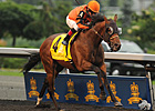 Strait of Dover Streaks to Queen's Plate Win