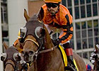 Strait of Dover Injured; No Breeders' Stakes