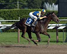Trainers Target Street Sense as Travers Looms