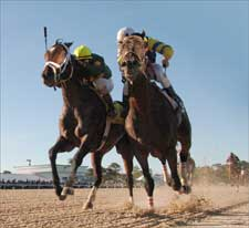 Street Sense Noses 'Saturday in Tampa Bay Derby