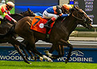 Strut the Course Edges Favorite at Woodbine