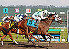 Stryker Phd Aims for Second Longacres Mile