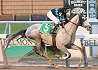 Stud Muffin Struts All in Empire Classic