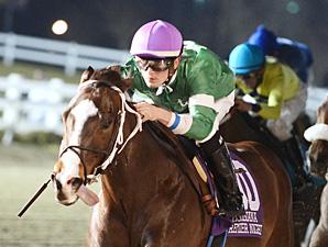 Su Casa G Casa wins the Night Sprint Stakes.