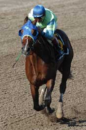 Confident Suave Pulls Away in Spa Cup
