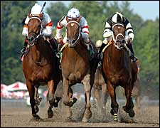 Adirondack to Host Impressive Field of Juvenile Fillies