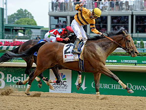 Successful Dan, Paynter Head Strong Woodward