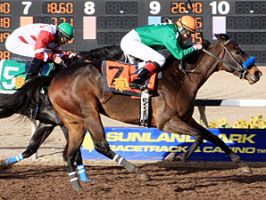 Sudden Ghost wins the 2013 El Diario.